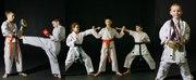 Спортивный клуб каратэ WKF