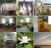 Рыбалка,  охота,  отдых в Дельте Волги под Астраханью (частный сектор).